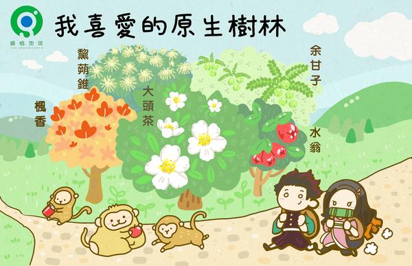 皂皂 | 最喜愛的原生樹種: 楓香、黧蒴錐、大頭茶、油甘子、水翁